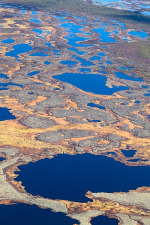 marshes: Aerial view of endless marshes in autumn