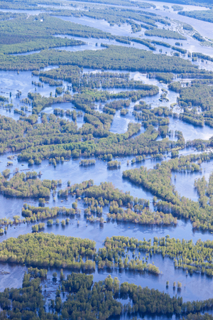 deluge: Aerial view flooded forest plains in summer.