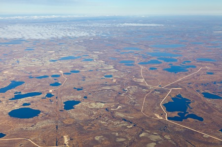 overhand: Aerial view of the tundra in autumn. Marsh with water under clear sky.
