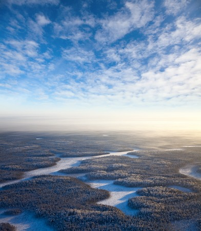 overhand: Aerial view of endless forest in time of winter day. Stock Photo