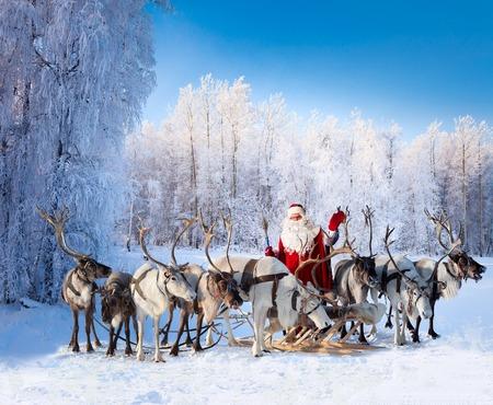 De kerstman ligt in de buurt van zijn rendieren in het besneeuwde bos.