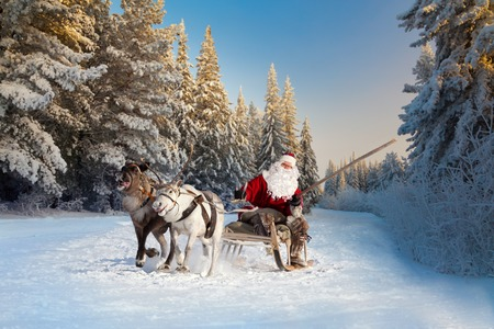 christmastime: Santa Claus riding in sleigh and driving his harness of reindeer in the fairy winter forest.