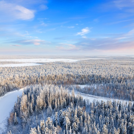 overhand: Top view of forest river in winter Stock Photo