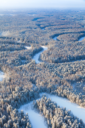 overhand: Aerial view of coniferous forest with small river during a winter day.