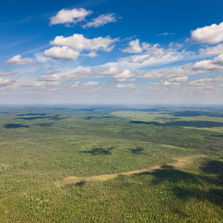 Aerial view of forest on boundless plain under white clouds. Stock Photo
