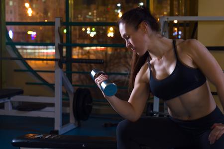 Woman lifting dumbbells in the gym Reklamní fotografie - 101006348