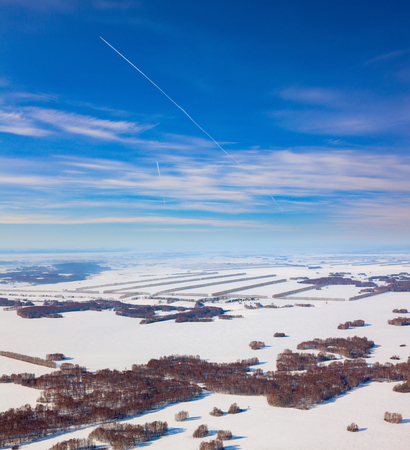Snow covered agricultural fields with birch groves, aerial view Reklamní fotografie - 100599612
