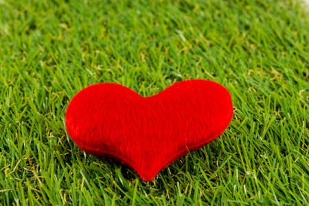 Heart of grass  background texture