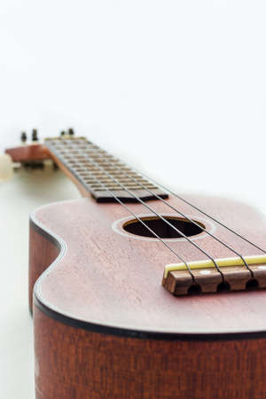 The picture of hawaiian guitar ukulele isolated