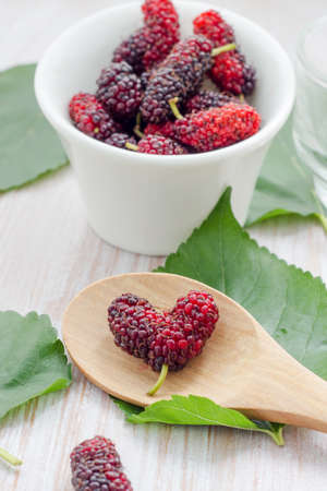 Ripe mulberry berries in a bowl, freshly picked Stock Photo