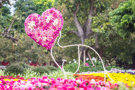 Flowers Heart in garden  Valentine  Love photo