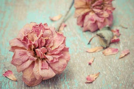 Dried rose on old vintage wood plates photo