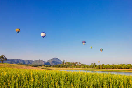 Hot air balloon over yellow flower fields on blue sky background photo