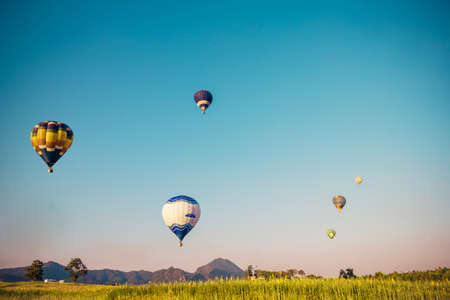 Hot air balloon flying over yellow flowers fields on blue sky  background in old style photo