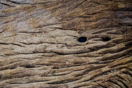 Dark wood texture. Abstract background. old wood background