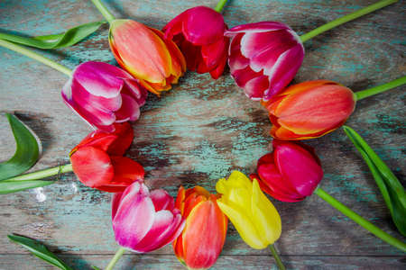 colourful tulips on a wooden background with space for text photo