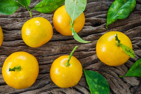 oranges (Citrus Japonica Thunb) on a wooden background Stock Photo