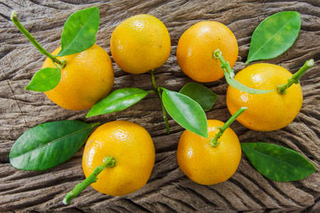 oranges (Citrus Japonica Thunb) on a wooden background photo