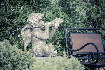 spreaded: little cupid angel with spreaded wings in an irish garden