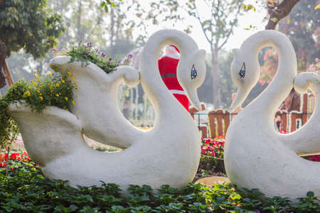 swan: Two swans in love with swan flower pot Stock Photo