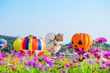 CHIANGRAI Thailand - FEBUARY 16 2017 : Singha Park International Balloon Fiesta 2017 in Singha Park, Chiang Rai, Thailand. 報道画像
