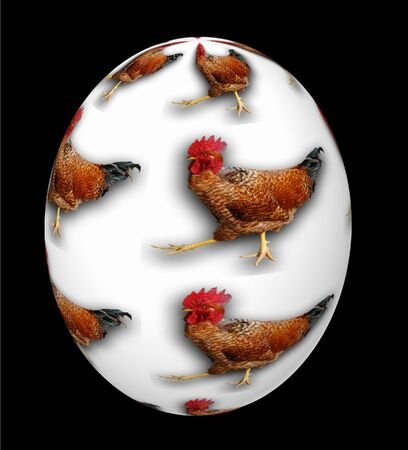 A 3d white egg decorated for easter with roosters Standard-Bild