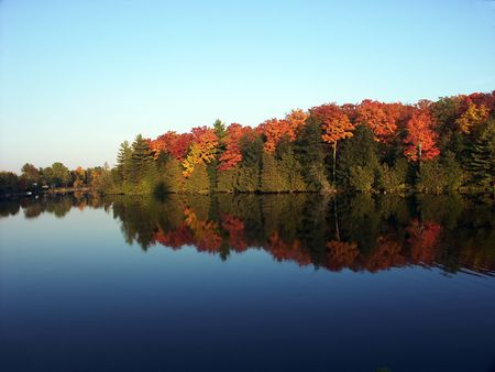 Colorful Autumn trees reflected in a calm waterway