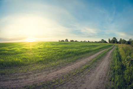 Landscape dirt road in a field at sunset leaving distant, fisheye distortion Stok Fotoğraf