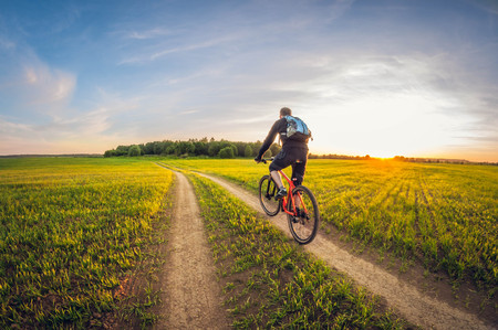 Cyclist on a dirt road in a field at sunset, cycling on a summer evening, sown field landscape Foto de archivo
