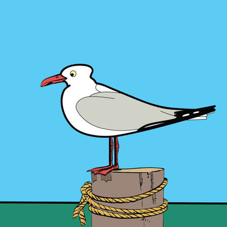 seabird: Sea gull sitting on the pier hands drawn vector illustration