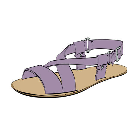 sandals isolated: Mens sandals isolated on white summer shoes, color  illustration isolated