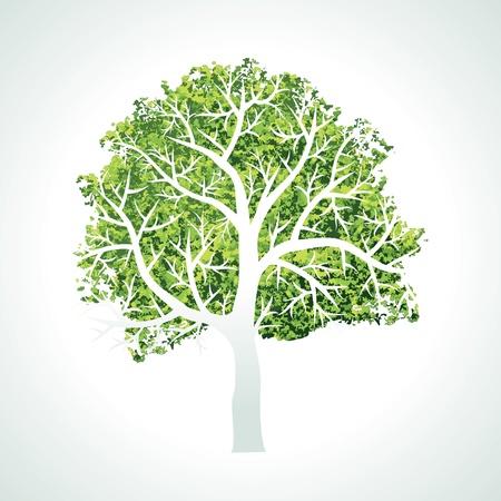 Baum mit Ästen und Blättern Vektorgrafik