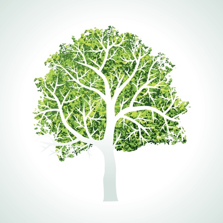 tree with branches and leaves Vector