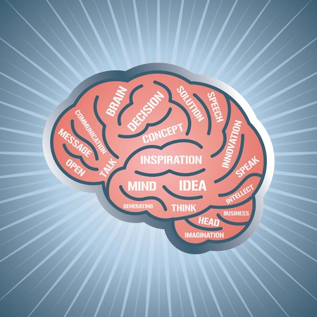 brain illustration: vector illustration with brain and think