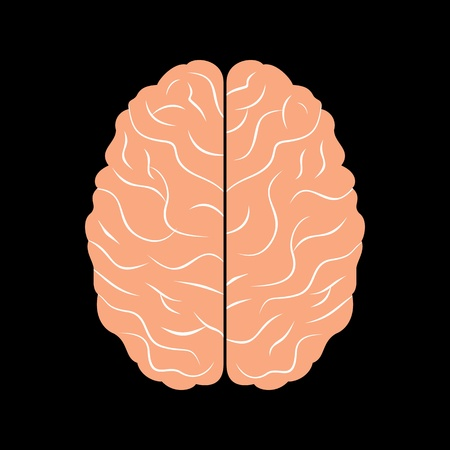 the brain with black background Stock Vector - 17730625