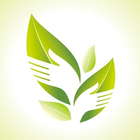 silueta hoja: Mano y silueta Leaf
