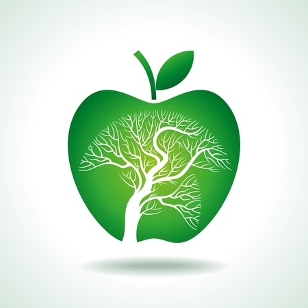 arbol de manzanas: árbol de manzanas aisladas sobre fondo blanco