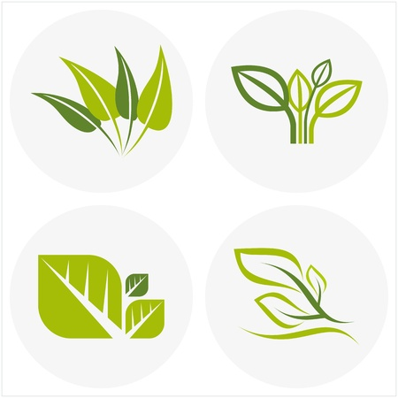 sprout: logos of green leaf
