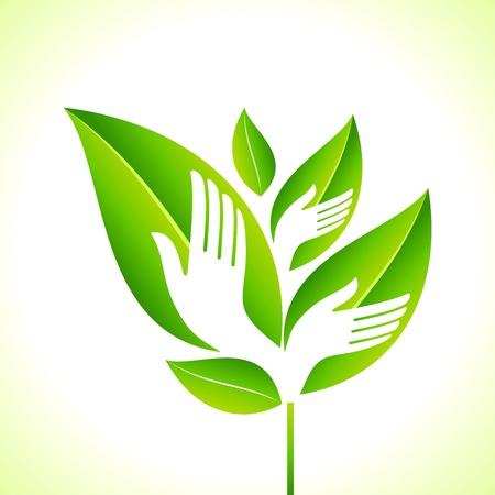 Main et feuille - Eco concept Banque d'images - 18210740