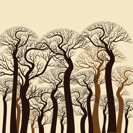grunge tree: Vintage tree background