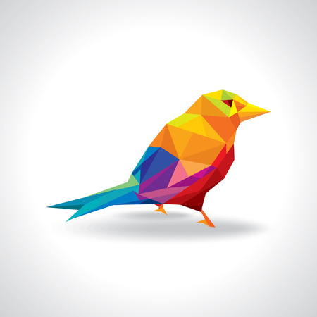 birds in flight: colorful bird illustration Illustration