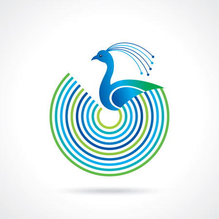 Peacock birds with colorful feathers Vector