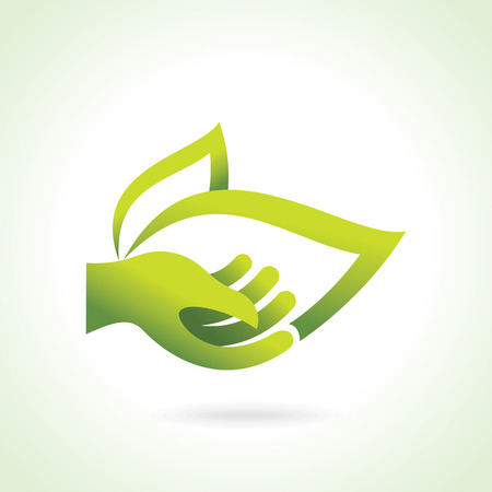 light green: Hand with green leaf over white background