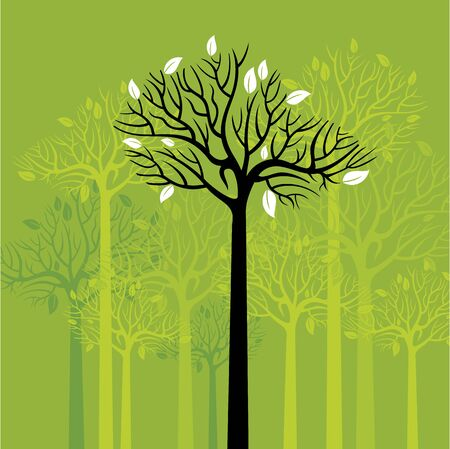 forest landscape: The group of green trees. Vector illustration