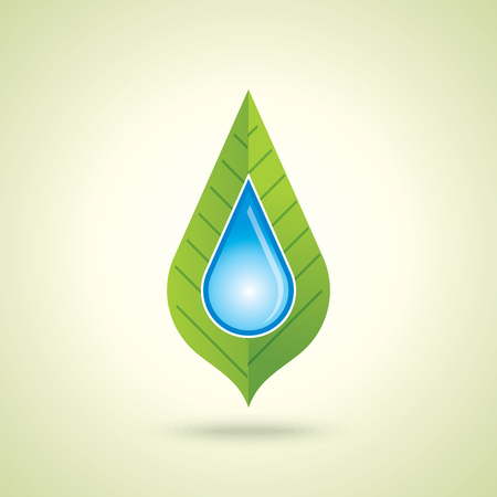 water and leaf, nature concept.