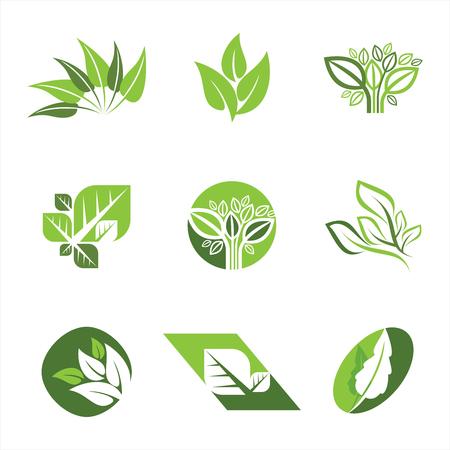 Flat leaves icons. Vector natural symbols with leaf. Illustration