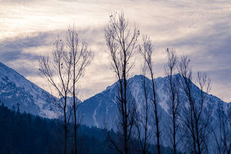 Snow covered peaks in pahalgam, Jammu and Kashmir, India. 免版税图像
