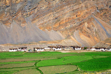 View of mountain village Chicham. Spiti, Himachal Pradesh, India