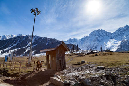 A horse rest near a wooden hut down the hills of Himalayan Mountains near Sonmarg, Jammu and Kashmir, India Stok Fotoğraf