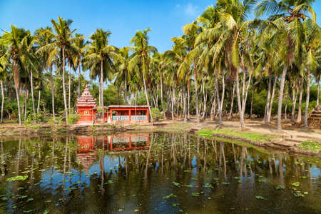 Reflection of hindu temple and palm trees at odisha, india.